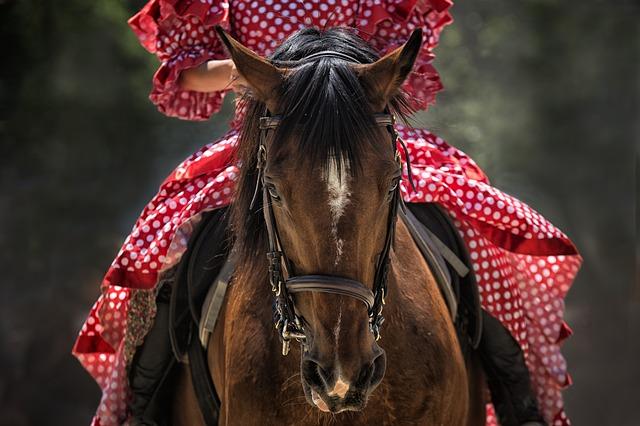 žena v šatech na koni