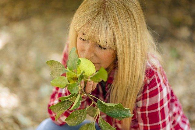 žena čichající k jablku