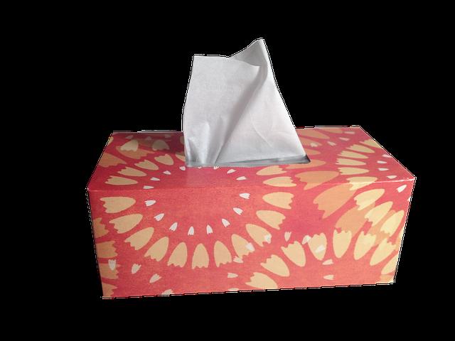 krabička s kapesníky