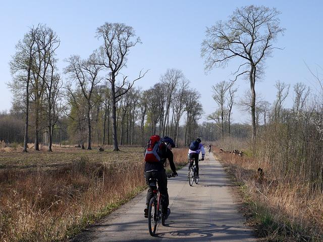 cyklo toulky po jižní Moravě