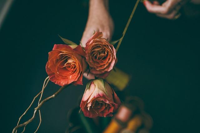 ruka držící kytici růží